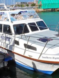 AB Just Nuisance - Boat Cruises